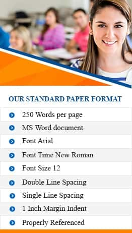Our Paper Format